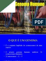 Biologia PPT - Genoma Humano