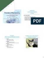 biochemistry slides chapter 3