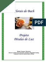 petalas de luz.pdf