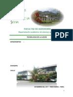 TECNOLOGIA-DE-LA-LECHE.docx