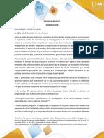 iniciacion.pdf