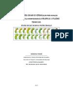 Dinamica versantilor.pdf