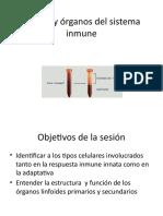 Clulas y rganos del sistema inmune.pptx