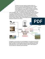 Qué es Biogas.docx