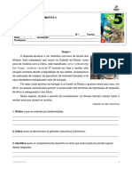 Ae Teste4 CCN5