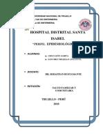 perfil_epidHDSI.docx