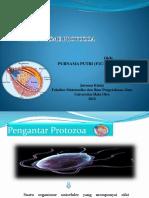 PURNAMA PUTRI (F1C1 16 106).pptx