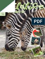 Singapore Zoo Magazine