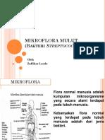 Zulfikar Laode Tugas 1 Mikroflora Mulut