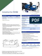 P250H2-P275HE2(4PP)GB(1110)