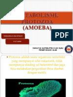 Faradilla Rachman (Amoeba)