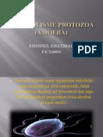Ppt Amoeba (Fiqrah)