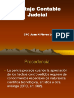 Peritaje Contable Judicial
