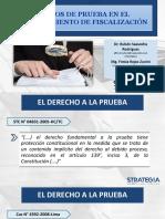 Medios de Prueba en El Procedimiento de Fiscalización (1)
