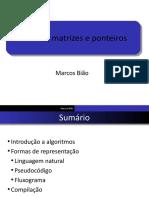 02 - Matriz Ponteiro Alocacao Dinamica