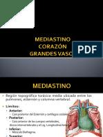 Tp2 - Mediastino - Corazón - Grandes Vasos - Parte 1