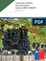 18 Manual Uva de Mesa.pdf