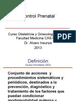 control prenatal 2013.pdf