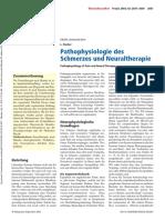 fischer2003.pdf
