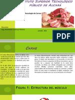 Tecnología de Carne