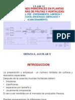 Clase 12 Fisiología 2018 - II