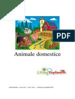 Little Explorers-Animale Domestice