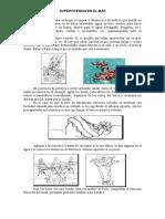 supervivencia-en-el-mar.pdf