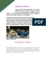 LA  MARINERA  NORTEÑA.docx