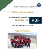 MODELO de INFORME de Campo Geologia REYALDO[1] (Recuperado)