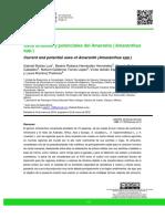 Dialnet-UsosActualesYPotencialesDelAmarantoAmaranthusSpp-6521553