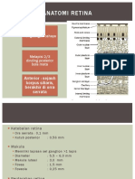 CSS - Anatomi,Fisio,Definisi,Etio,Epidimio