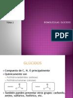 glucidos2bach.pdf