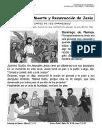 23. PASION, MUERTE Y RESURRECCION DE JESUS.docx