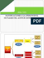 Auditoría Nuevo Dictamen de Los Auditores Independientes_Francisco Bustinza
