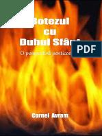 Cornel Avram - Botezul cu Duhul Sfant, O Perspectiva Penticostala.pdf
