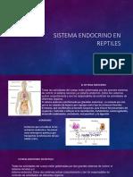 Sistema Endocrino en Reptiles