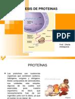 sintesisdeproteinas-100309093825-phpapp01