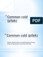 Common Cold (Pilek)