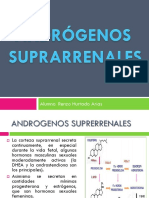 ANDROGENOS-SUPRARRENALES