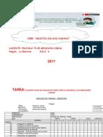 analisis de tarea de multidiscapacidad.docx