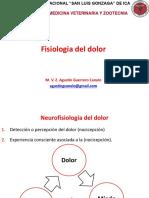 Clase7 Y  8. Dolor y Analgesia - FMVZ.pptx