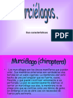 murcielagos-2609