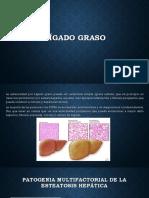 HIGADO GRASO POWER POINT.pptx