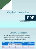 Cerebral Circulation 2018.pptx