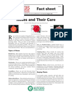 care about roses.pdf
