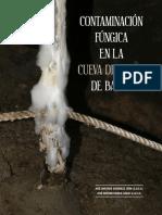 As 30 63-71 Contaminación Fungica Cueva Del Yeso de Baena