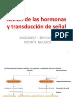 BQ 17 CHI 13 Hormona Señal de Transducción