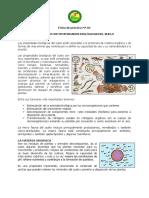 Ficha de práctica Nº 04. MES.pdf