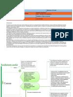 ARL_Entregable 1.doc..pdf