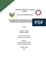 Universidad Nacional de La Amazonia Peruana Facultad de Ingeniería Química